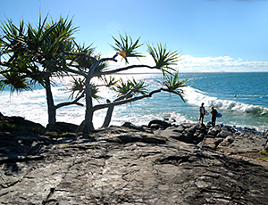 why-noosa-home